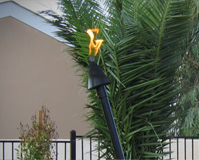 Automated Black Cone Head Tiki with Black Pole